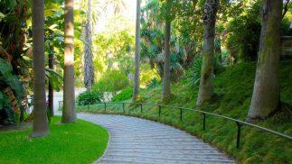giardini di Lisbona