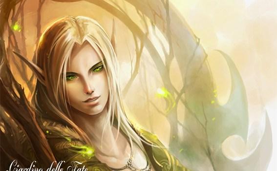 chi sono gli elfi