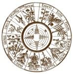 Oroscopo Celtico degli Alberi