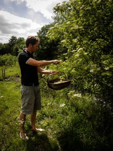 The story of Gibson's Organic Liqueurs: Miles picking fruit