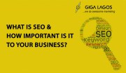 What is SEO & Why it is Important to your Business?