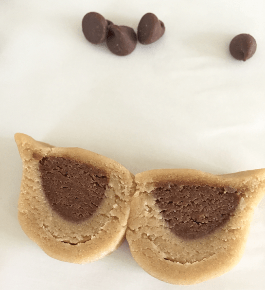 hoot owl cookie tutorial