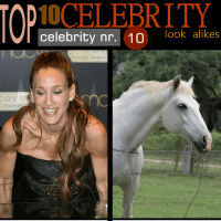 Top 10 CELEBRITY look alike... [they are so funny] you got to check this :)))