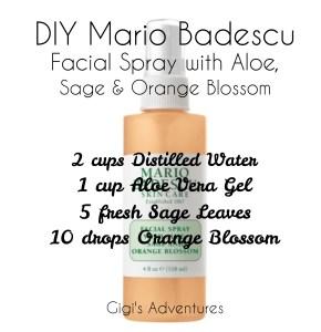 Diy Mario Badescu Facial Spray With Aloe Sage And Orange