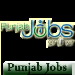 punjab button logo