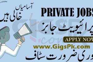 Sub Editors Job In Private Company