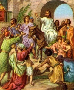 Jesus Enters Jerusalem on a Donkey Matthew 21:7-9