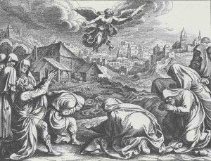 david's plague