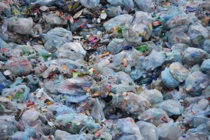 Humans release 300 million tons of plastic into the environment each year