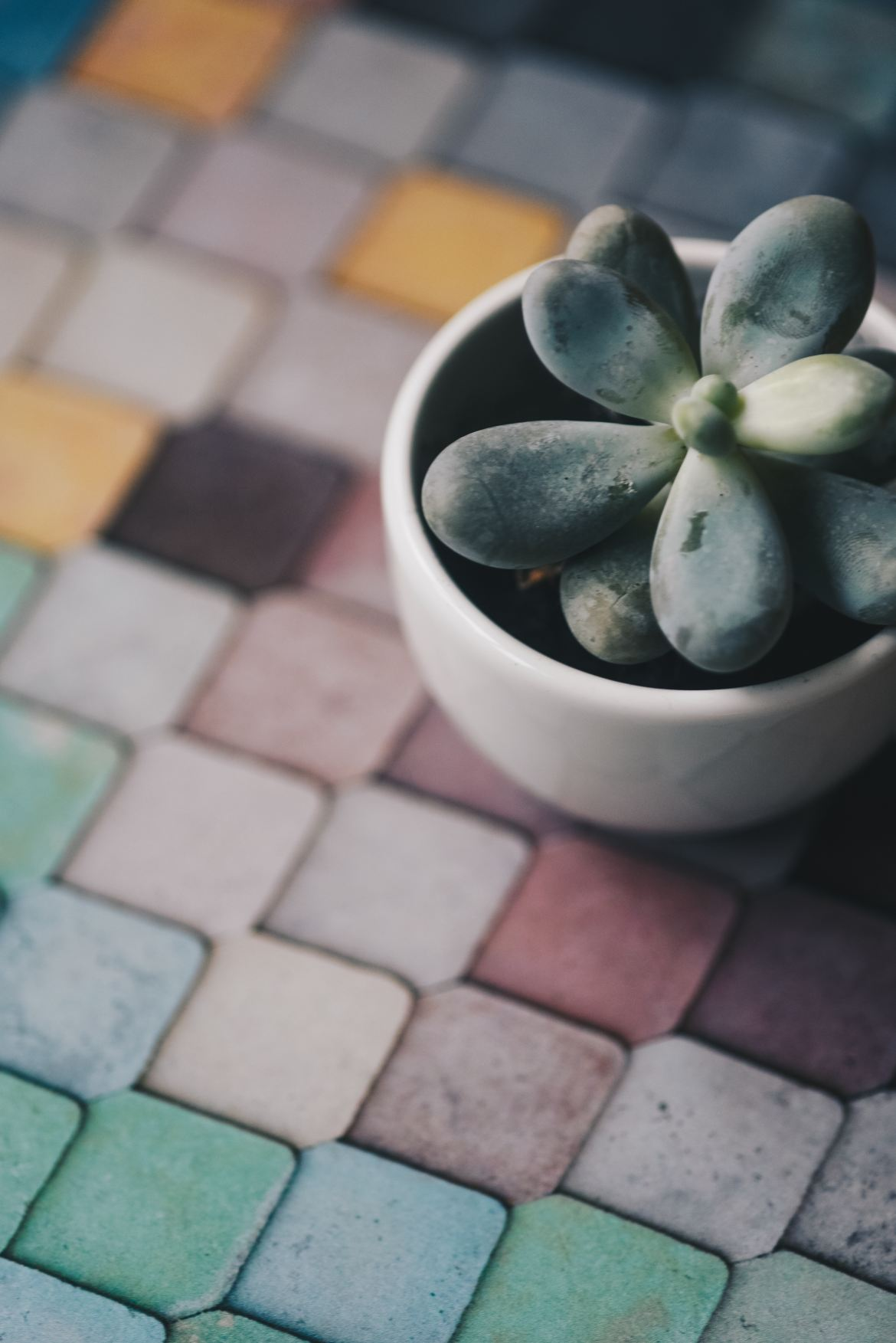 A fish scale pattern is incredibly lovely, and gives an opportunity for a bold array of colors in the aqua and teal family.