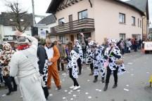 092-Gillenfelder Rosenmontagszug 2017 655