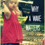 Why a wave matters, thoughts on parenting a nonverbal child