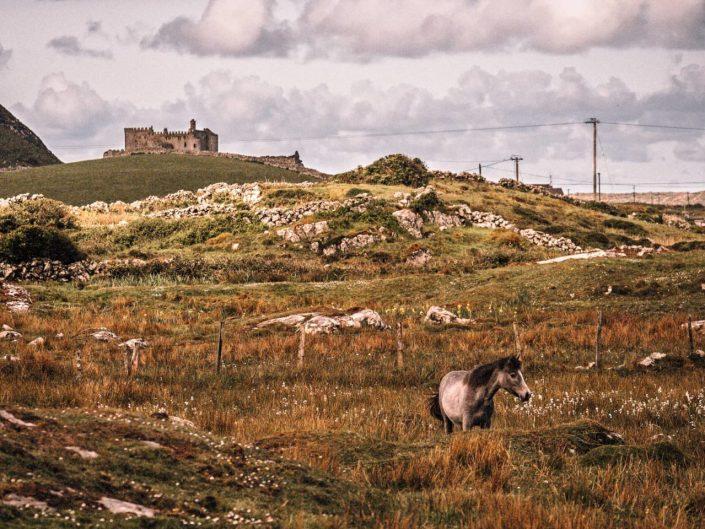 Château hanté de Grace O'Malley