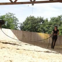 Gina Pitti cours travail en longe