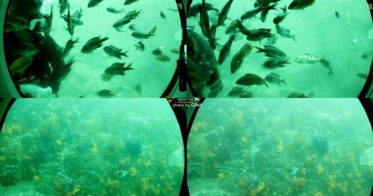 濟州島景點》海底看魚冒險不用全身濕搭搭 我在西歸浦搭潛水艦 / 潛水艇 (서귀포잠수함)