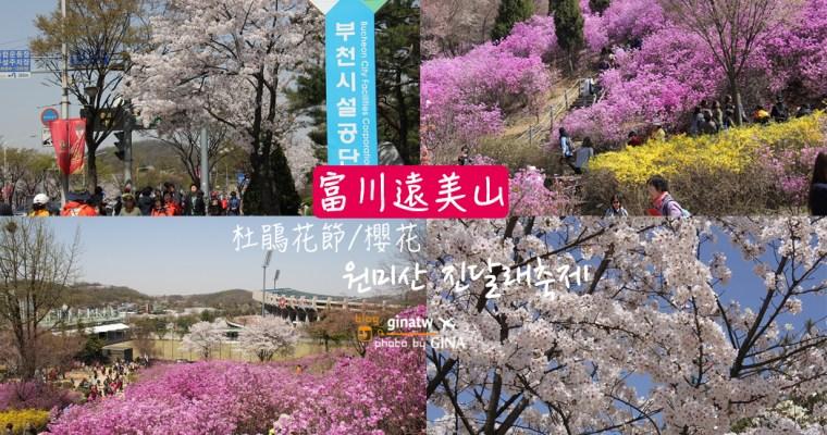 韓國京畿道賞櫻花勝地 遠美山杜鵑花節(원미산 진달래축제)