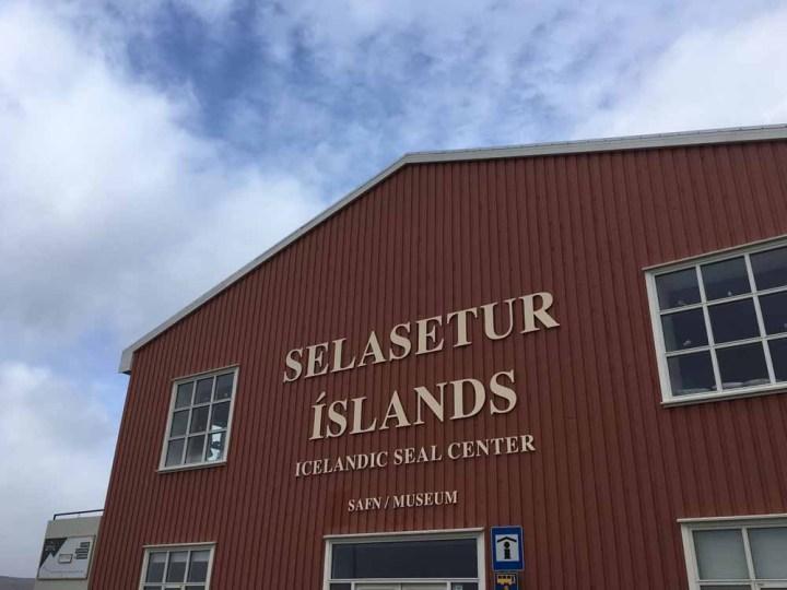 Hvammstangi Selasetur Seal Center Infocenter für Seehundsichtungen Islands Norden Roadtrip Island gindeslebens.com © Thomas Mussbacher und Ines Erlacher