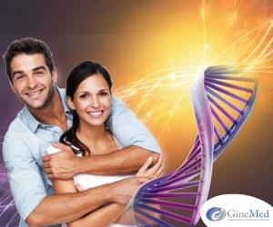 estudio genético  Estudio Genético estudio gen  tico GINE 2