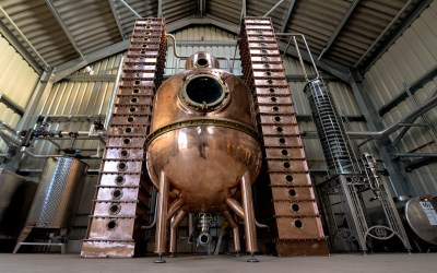Gin of the Month: The Spirit of Toad from The Oxford Artisan Distillery