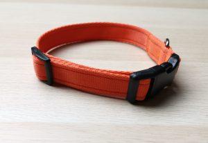 Orange webbing collar