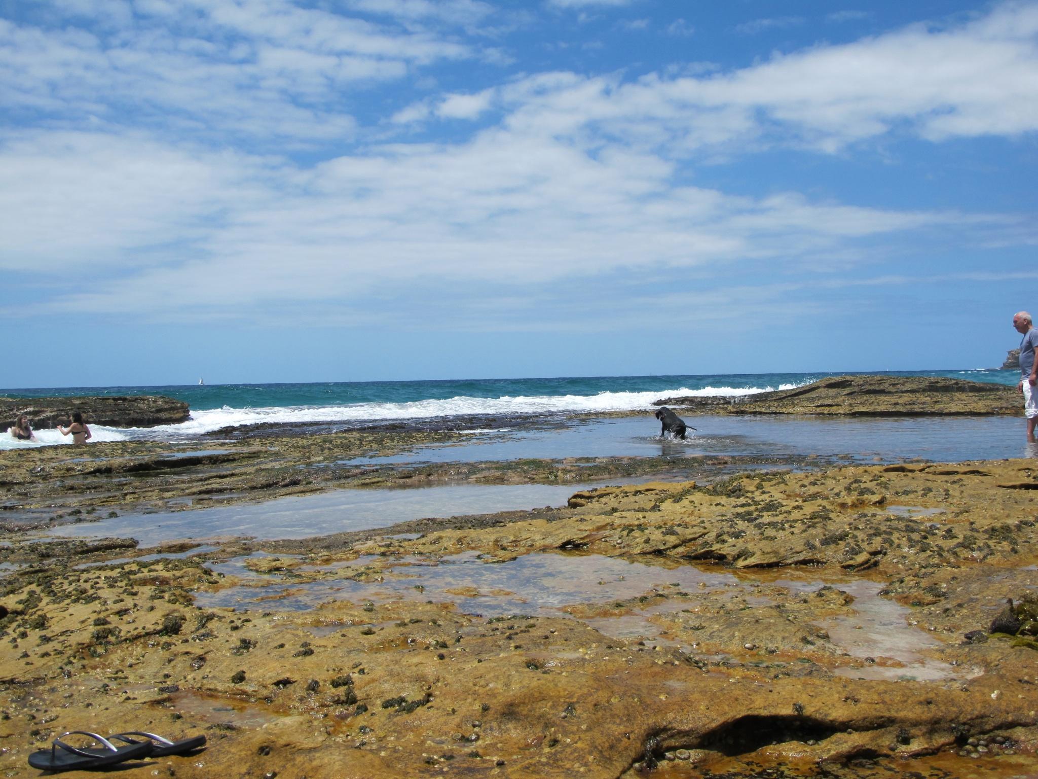 rock-pools-sydney-australia