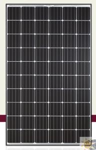 Q.PEAK-G4.1 290-305