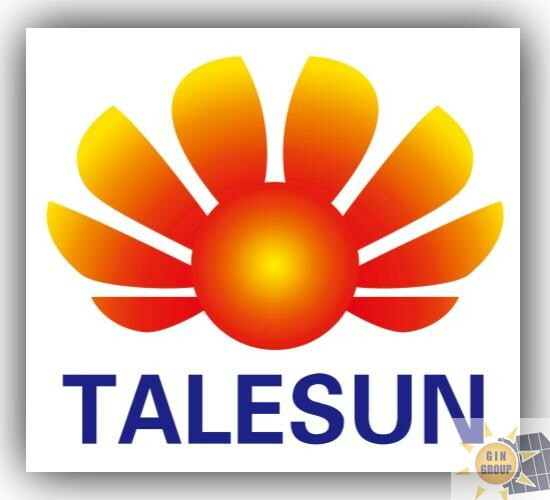 Good Forecast : Talesun Solar expands more capacity for 2021