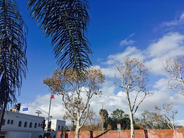 ハリウッド・メルローズの青空