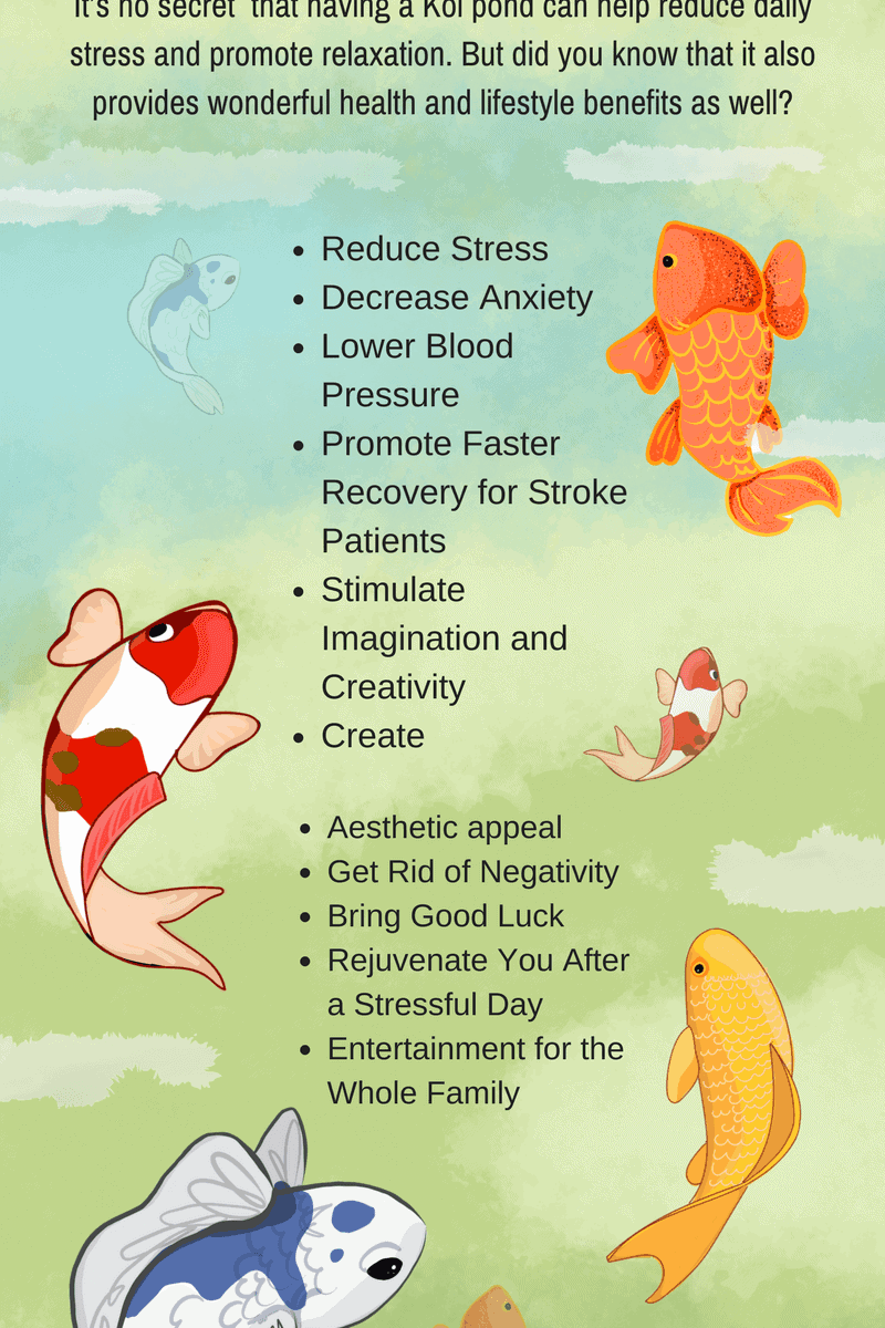koi fish therapeutic effects