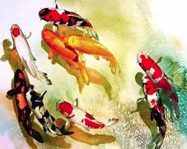 koi fish art diamond koi fish painting