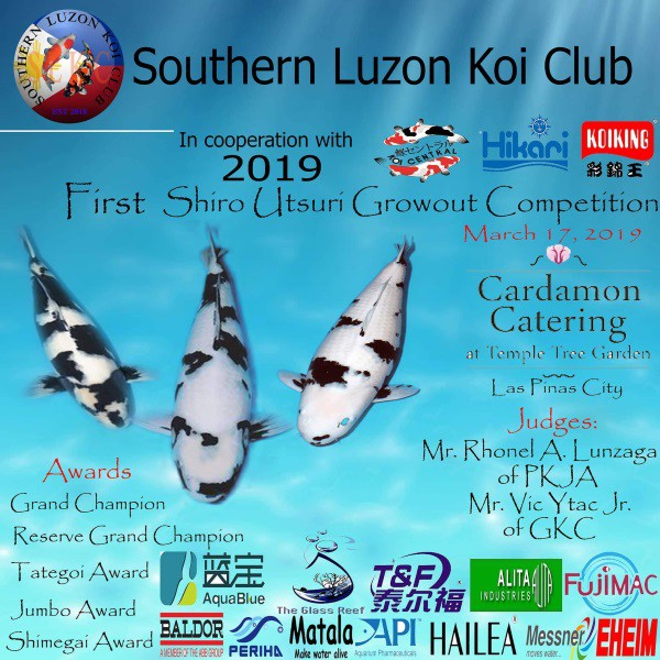 koi show 2019 philippines First Shiro Utsuri Growout Competition