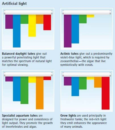 artificial light spectrum