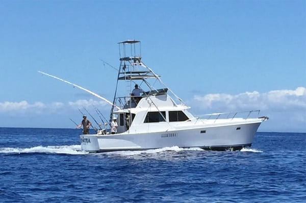 Why is opting for a fishing charter considered a relaxing experience?