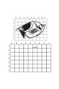 disegni da copiare pesciolino
