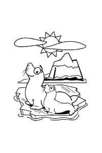 disegni da colorare per bambini di 7 anni foche