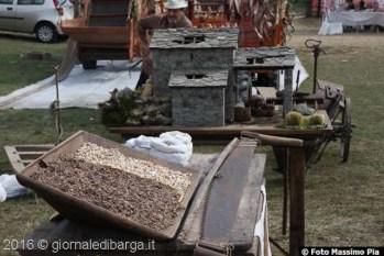 filecchio-sgranatura-granturco-2062.jpg