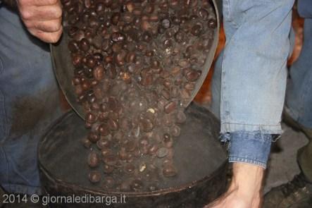 pulitura-castagne-a-valdivaiana-50.jpg