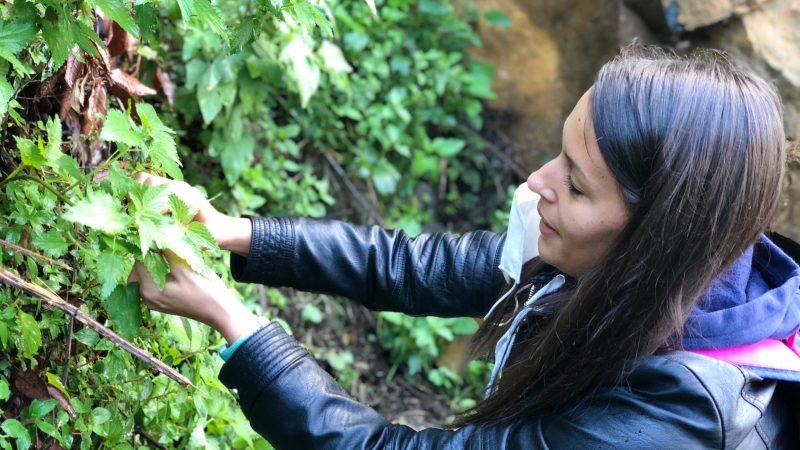 Radici in Natura: Il progetto outdoor per i bambini è partito da Nemi