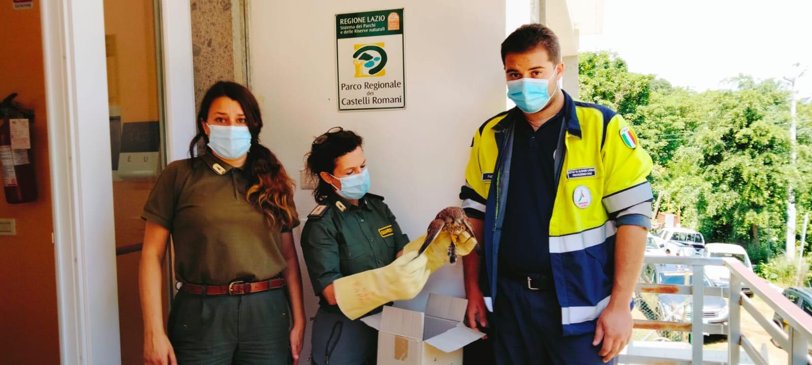 protezione civile guardaparco