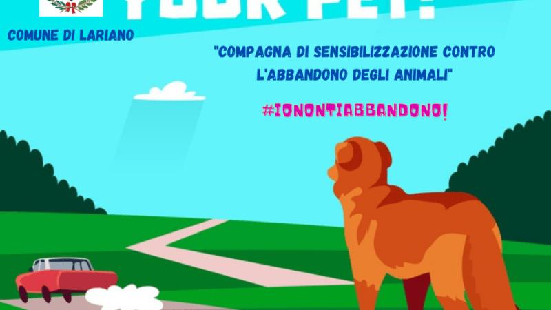 """Lariano, amministrazione comunale lancia una campagna anti abbandono degli animali domestici """"Ionontiabbandono"""""""