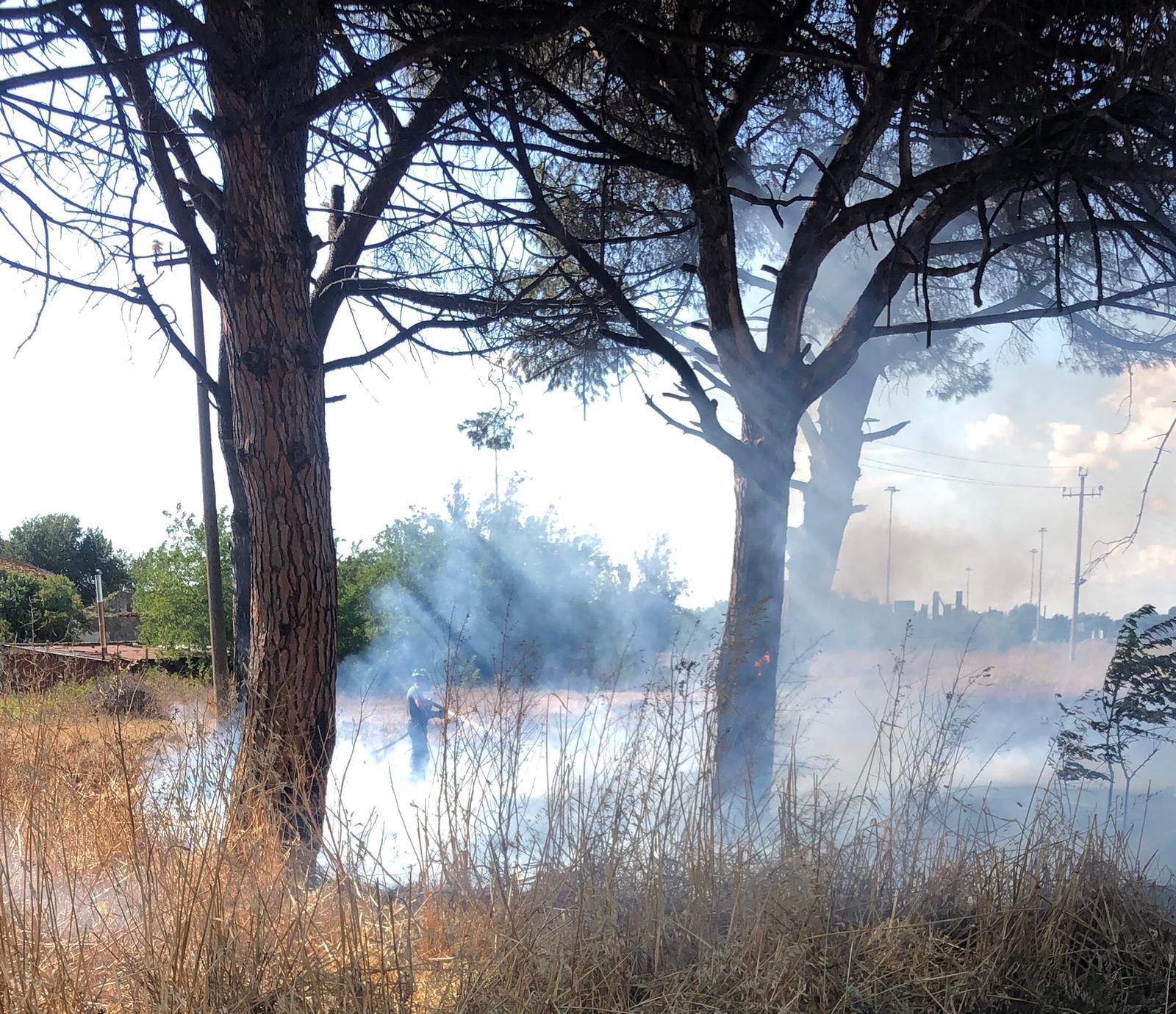 La Barbuta, divampato un incendio nell'ex campo nomadi
