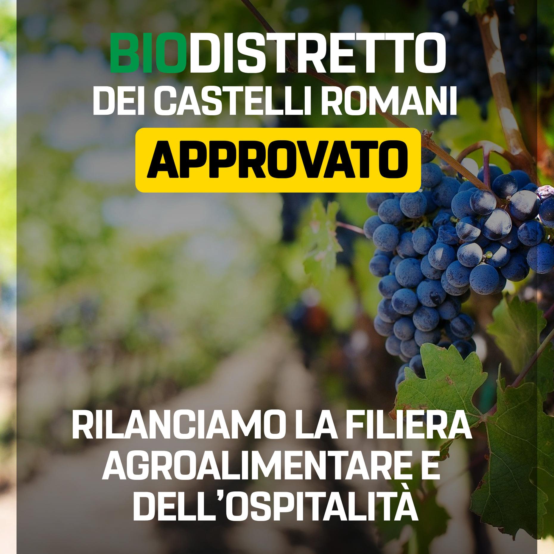 Marino, Biodistretto dei castelli romani: parte la riscossa della filiera agroalimentare e dell'ospitalità