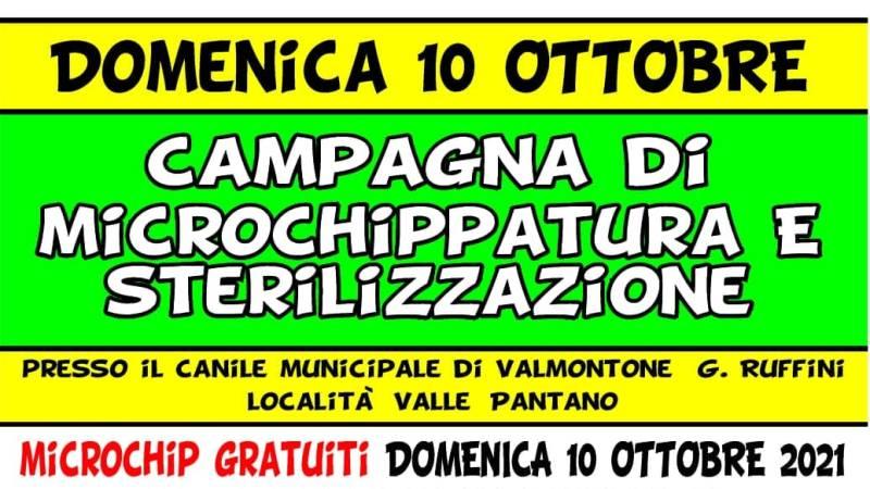 Valmontone, 10 ottobre campagna di microchippatura e sterilizzazione