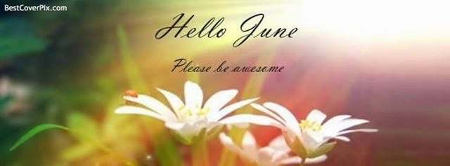 Read more about the article HELLO  JUNE