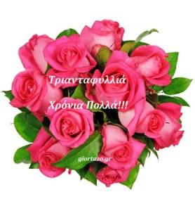 Read more about the article Τριανταφυλλιά , Τριανταφυλλένια  Χρόνια Πολλά!……..giortazo.gr
