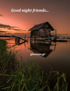 🌜🌼🌺😴💤Good night friends