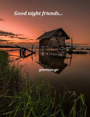 🌜🌼🌺😴💤Good night friends