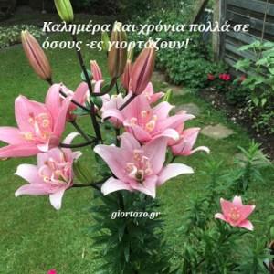 🌻Καλημέρα σε όλους 🙋🏻♂️🥀Χρόνια πολλά σε όσους-ες γιορτάζουν🌷☕️🍰Καλή εβδομάδα…..giortazo.gr