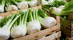 Read more about the article Εσείς δεν βάλατε ακόμη το φινόκιο στη διατροφή σας;