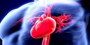 Τα 4 ροφήματα που θα σου χαρίσουν μια υγιή καρδιά